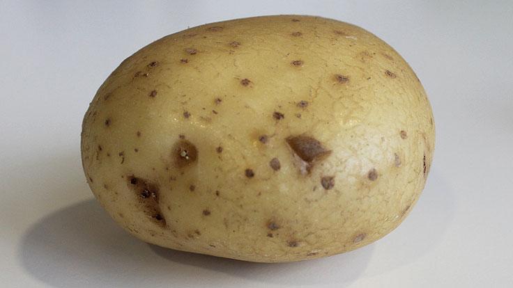 why wont my potato battery work