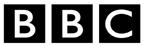 BBC Blocks logo
