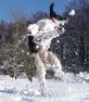 Winter Walkies by Adrian Russen
