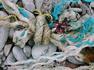'Tidal Treasures Breakwater Beach' by Sylvia Gilmore