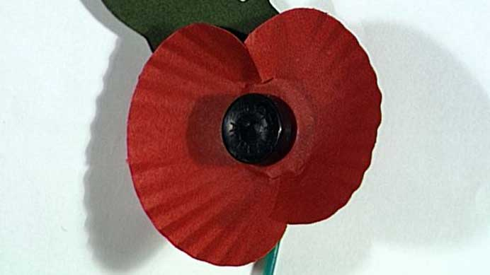 Wearing Poppies