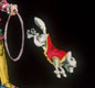 A magic lantern slide.  The picture was painted on glass. Shown on a screen, 'slipping slides' seemed to move. So the dog would jump through the hoop!