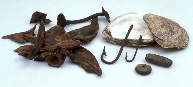 From these finds at coppergate york we know vikings went fishing