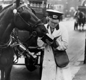 A female milkman makes an entry in a notebook, with a horse beside her.