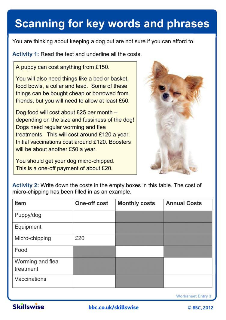 sentence types worksheet worksheet workbook site